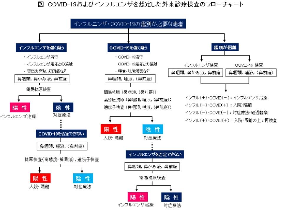 感染症学会が示した検査の手順 フローチャート