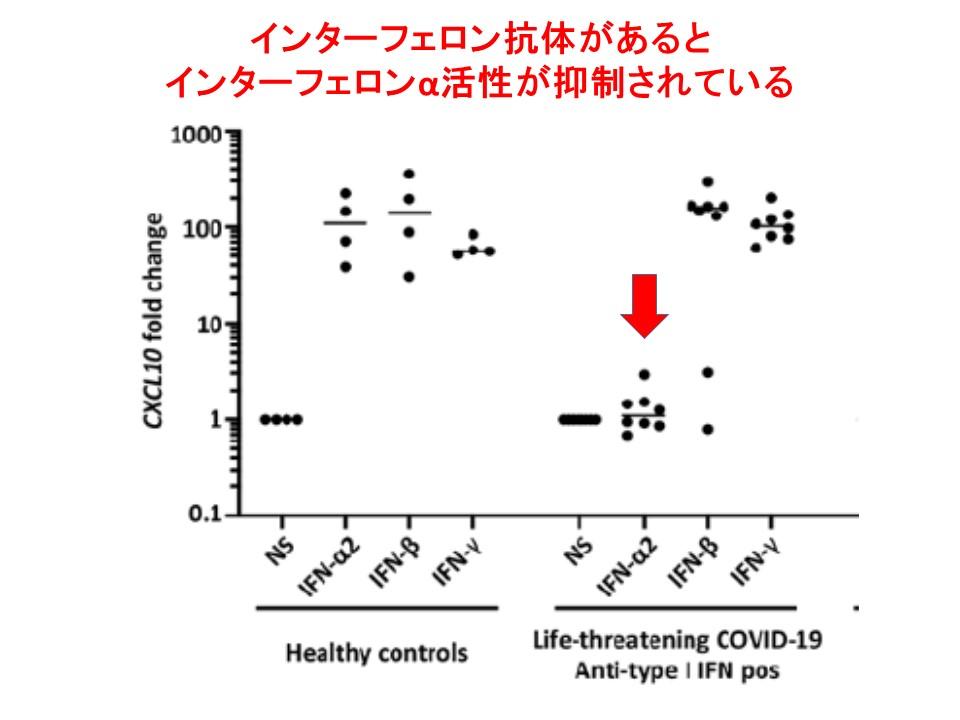 インターフェロンαに対する自己抗体が陽性だとインターフェロンα活性が抑制されていることを示すグラフ・その2