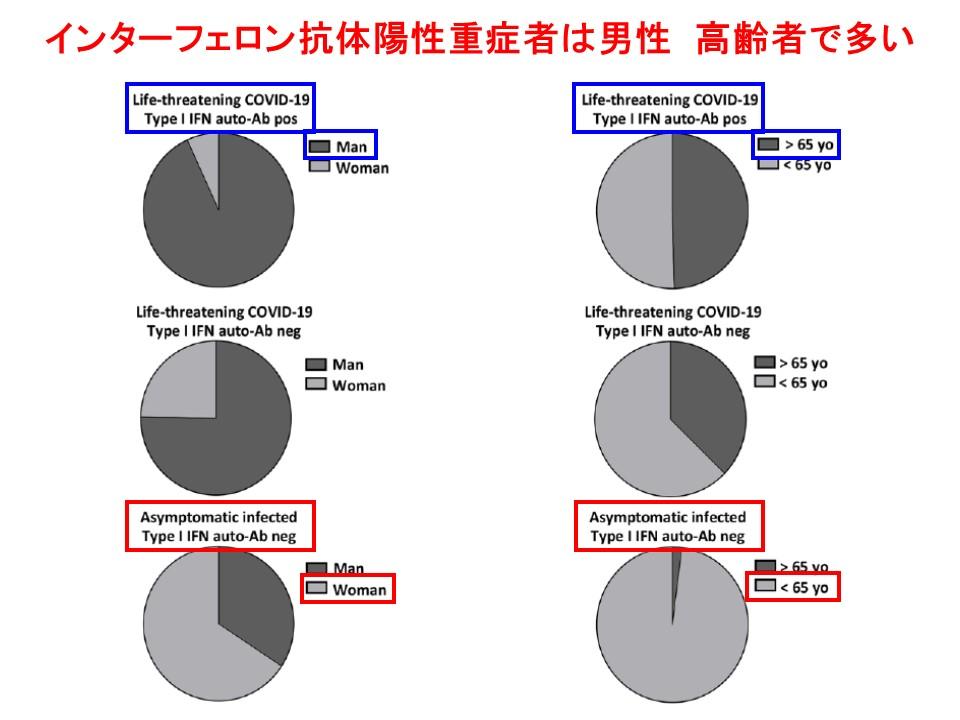インターフェロンαに対する自己抗体が陽性の重症者は男性 高齢者に多いことを示すグラフ
