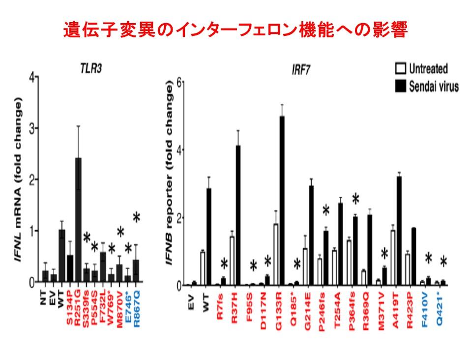 遺伝子変異の多くはインターフェロン機能を低下させていることを示すグラフ