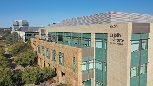 ラホイヤ研究所の全景