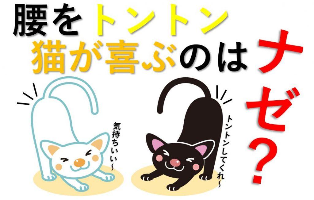 ネコたちがこの行為を喜ぶ理由をまとめた図