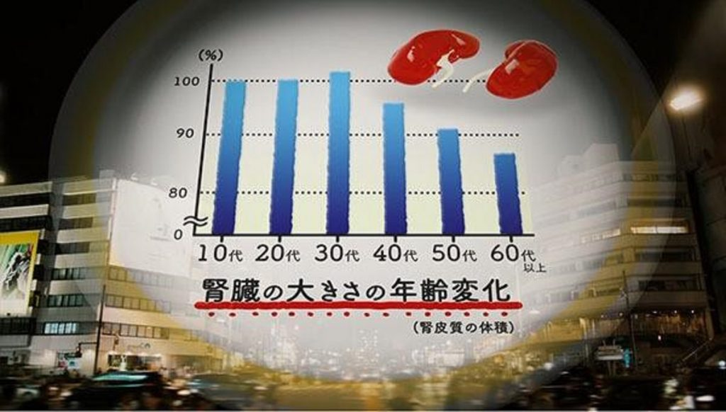 加齢による腎臓の機能低下について説明するグラフ