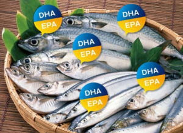 EPA DHAが青魚に多いことを説明する図