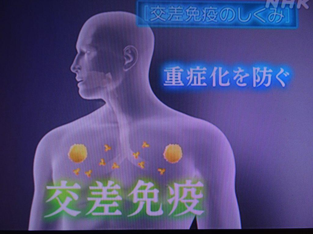 交差免疫が重症化を防ぐことを示すグラフ