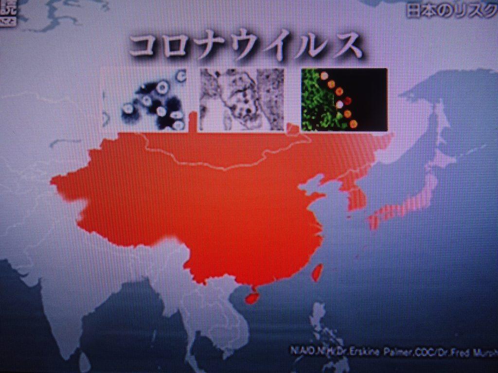 コロナウイルスの仲間が東アジアで頻繁に流行を繰り返してきたことを示す図