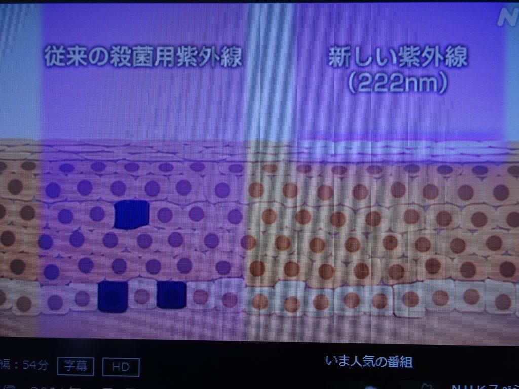 波長222nmの紫外線は肌を傷つけないことを示す図