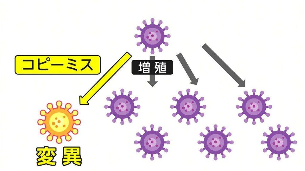 RNAウイルスが変異を起こすのはありふれた現象であることを説明する図