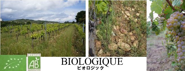 ビオロジック農法のポスター