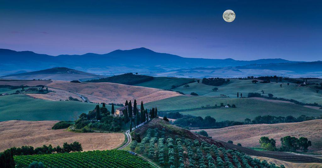 月に照らし出されるブドウ畑