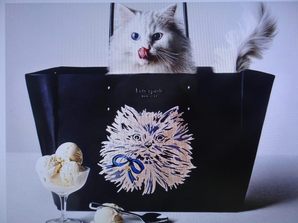 ショッピングバッグに入った白いネコさん