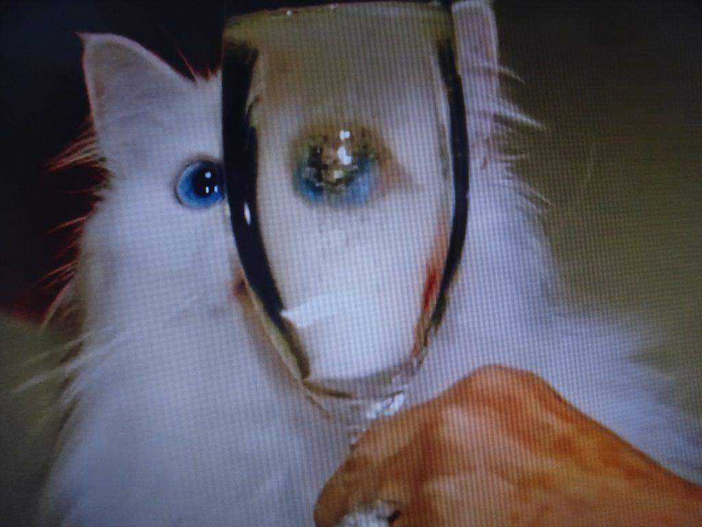 フルートグラス越しに見えるブルーの瞳