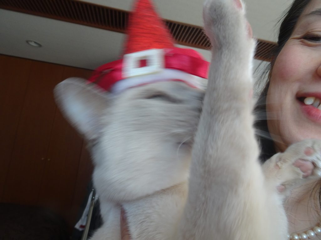 帽子を嫌がる楓