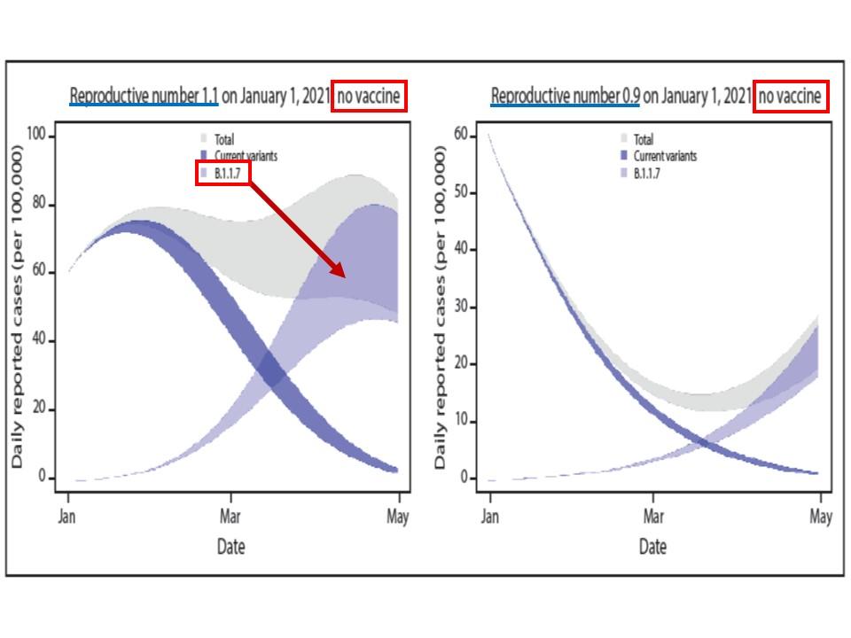 感染者数はさらに増大するリスクがあることを示すグラフ
