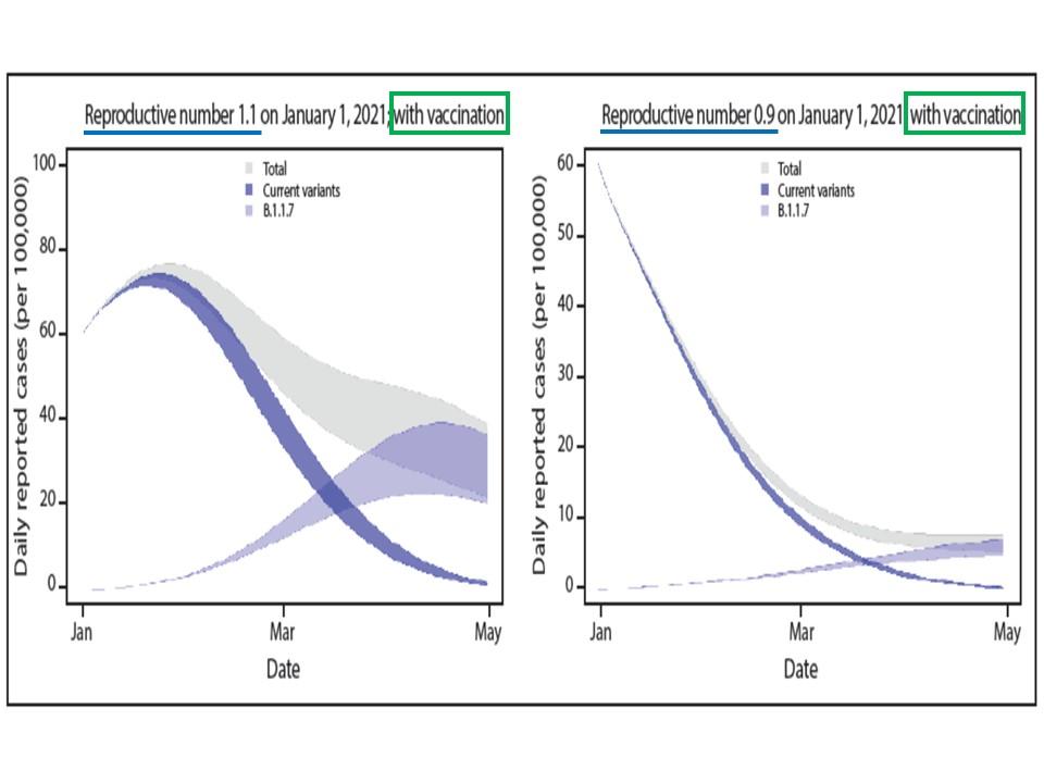 全体的に感染者数は減少に向かうことを示すグラフ