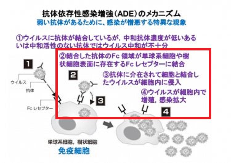 ADEについて説明した図