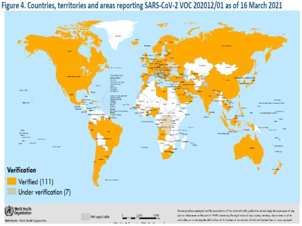世界でのイギリス株の広がりを示す地図