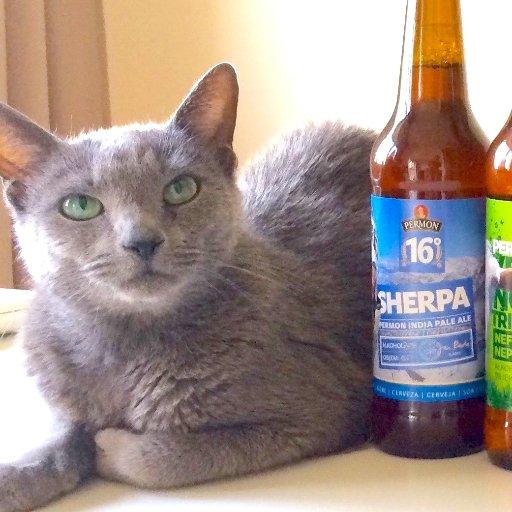 チェコビールのボトルとデイジー