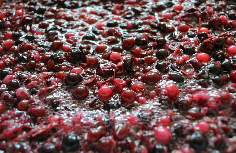 ブドウが自然に発酵している様子
