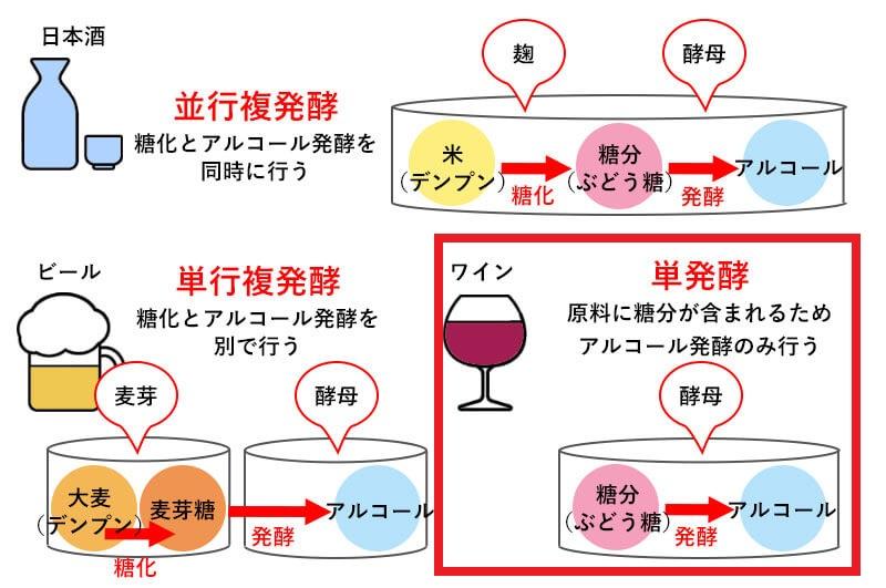 アルコール発酵とマロラクティック発酵