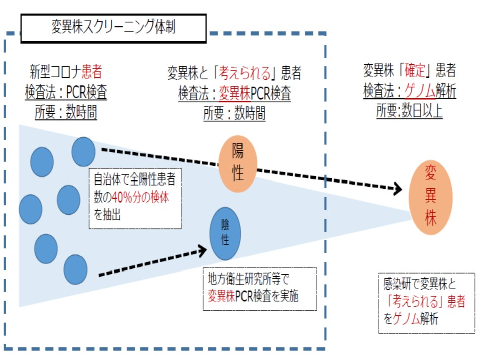 日本における変異株スクリーニング体制を示す図
