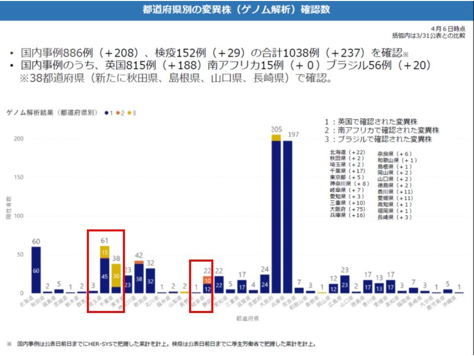 ブラジル株は千葉県 埼玉県で多く南アフリカ株は岐阜県で多いことを示すグラフ