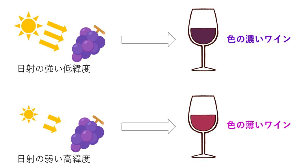 緯度とワインの関係を示した地図