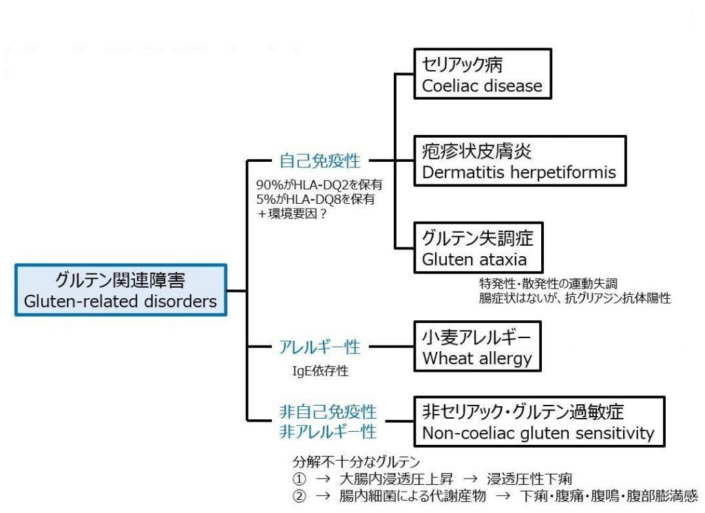 グルテン関連疾患の分類を示す図・その2