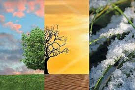 ブドウ栽培に関する気象条件についてまとめた表