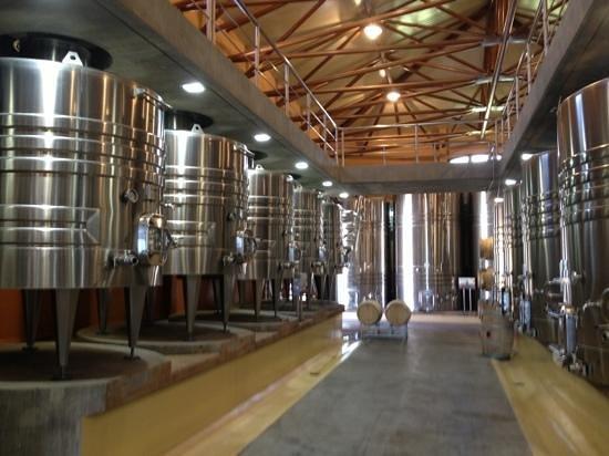 現代的な醸造設備