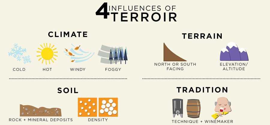 テロワールを構成する諸条件