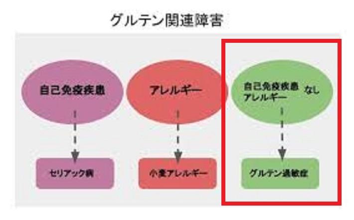 グルテン過敏性腸炎について説明する図