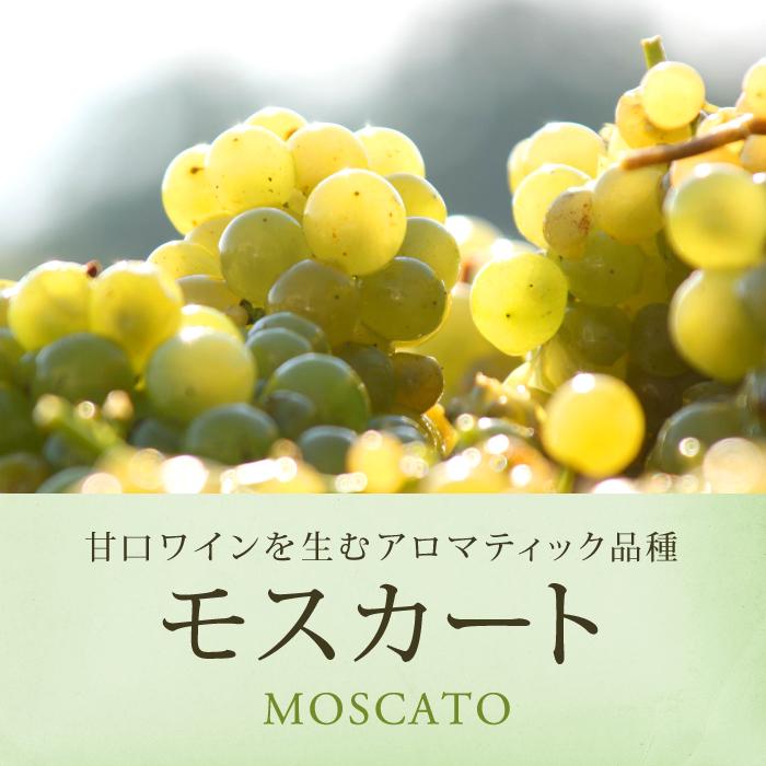 モスカートのブドウの実