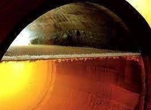 熟成樽の中に出来た特殊な酵母が作る白い膜・フロール