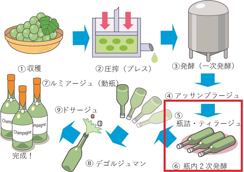 シャンパンの造り方を説明する図