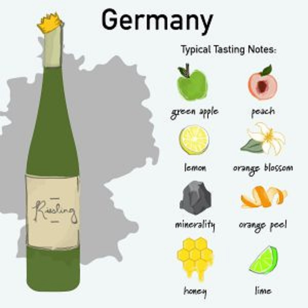 ドイツワインの味わい アロマをまとめた図