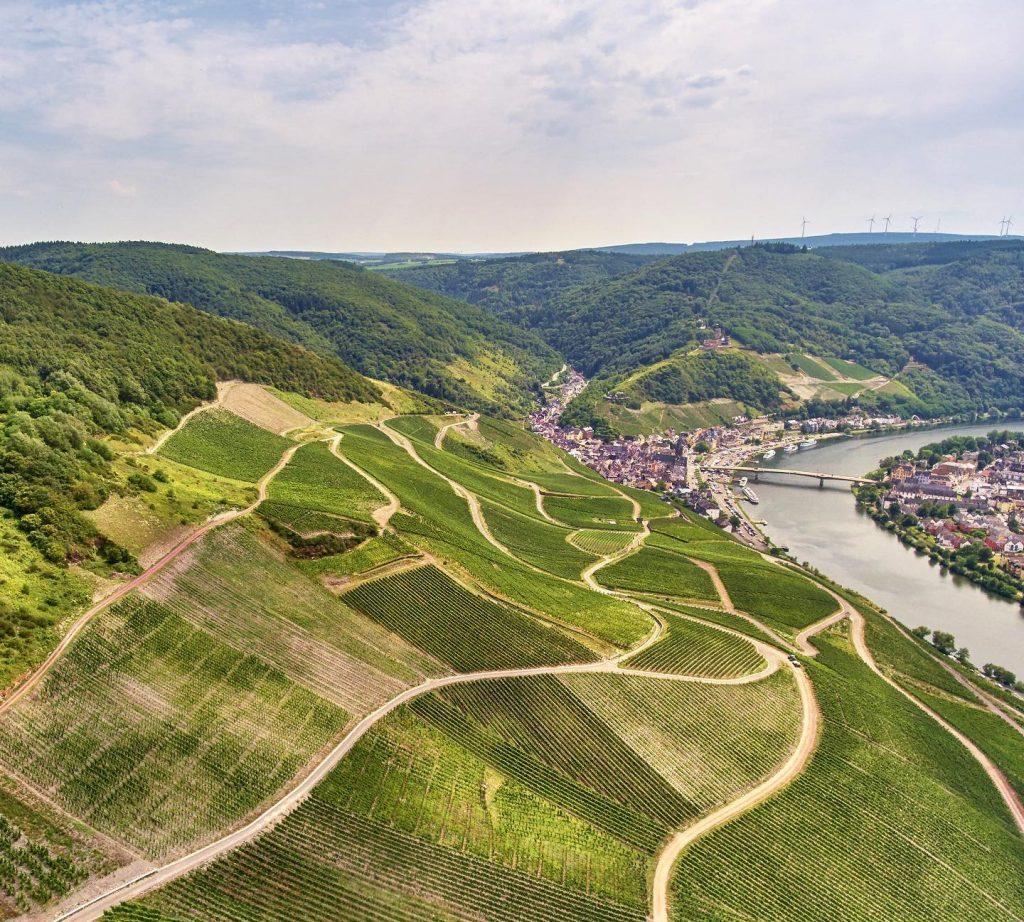 ドイツでの傾斜地でのぶどう栽培の様子