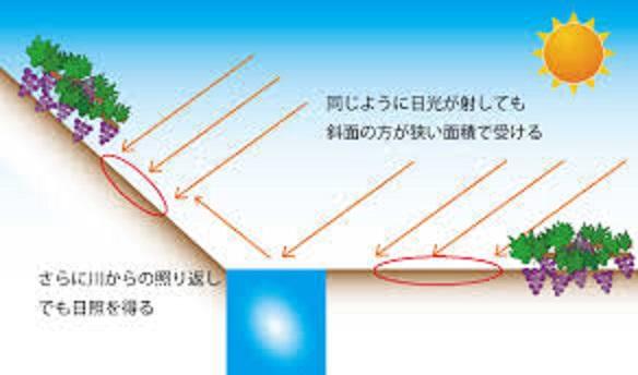 傾斜面の畑は太陽のエネルギーを得ることが出来る機序を説明した図