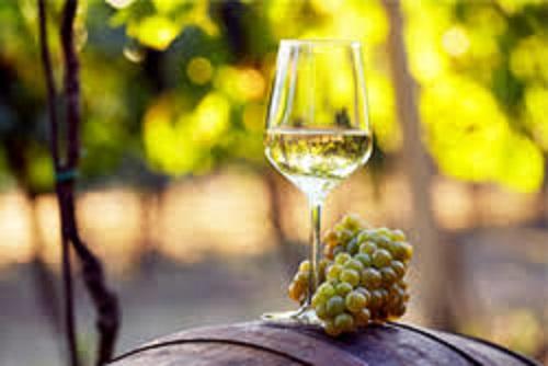 ドイツの上品で風格のある味わいのある白ワイン