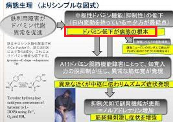 ドパミン系の機能低下について説明した図