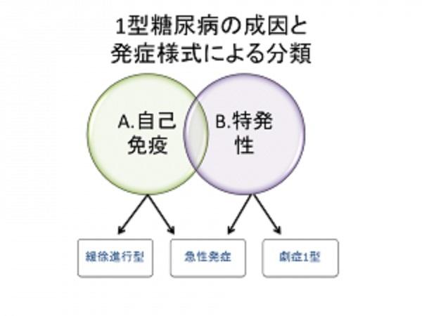 自己免疫性 特発性の違いを説明した図