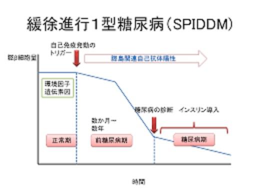 緩徐進行型の臨床経過を示した図