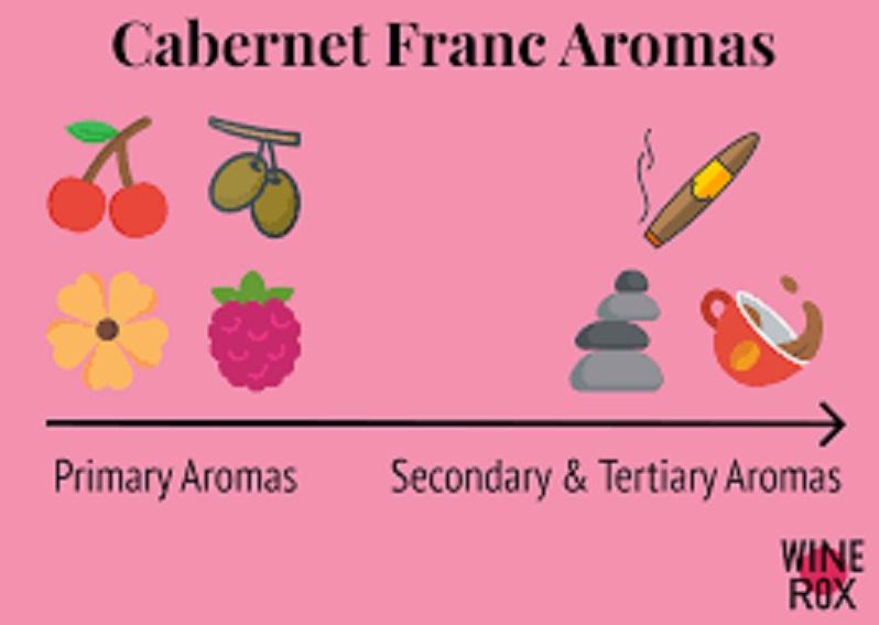 カベルネ・フランの味わい アロマをまとめた図