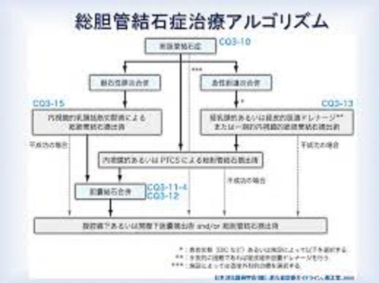 胆管結石の外科手術について説明した図