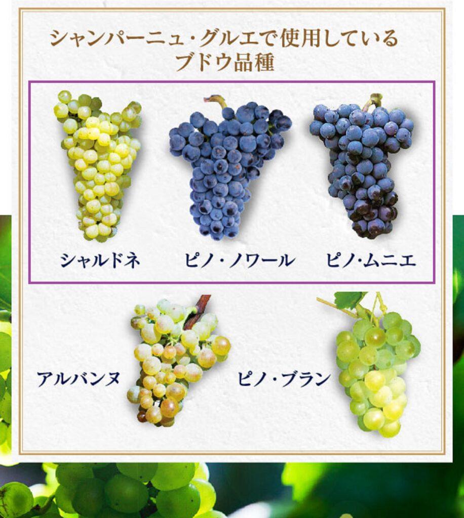 シャンパーニュを造るブドウ品種をまとめた図