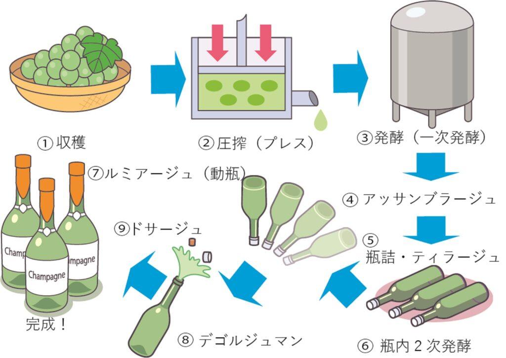 シャンパンの製造過程を示した図