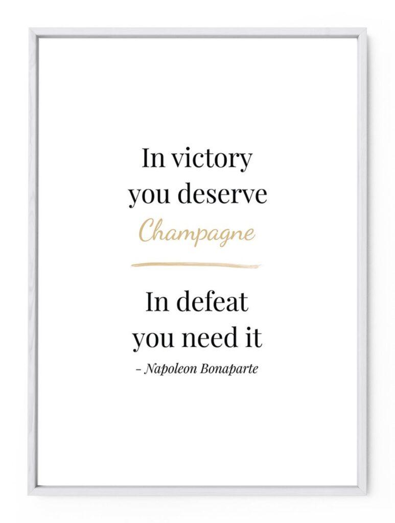 ナポレオンが語った言葉