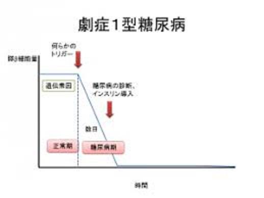 劇症型の臨床経過をまとめた図