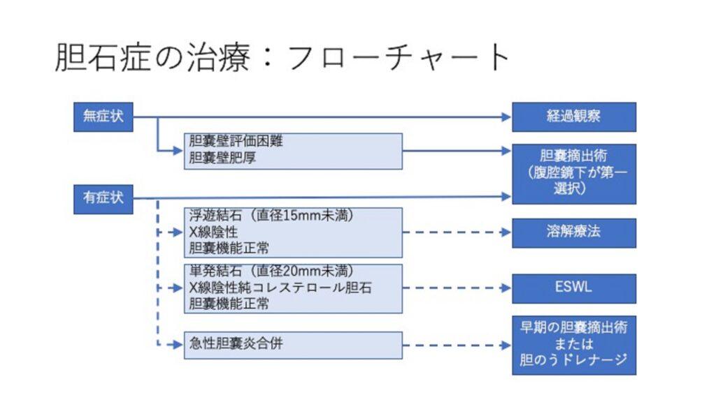 胆のう結石の手術適応例について説明した図