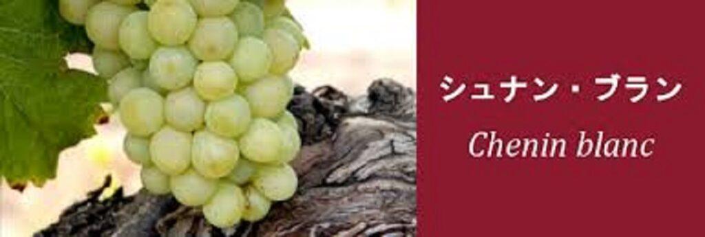 シュナン・ブランのブドウ